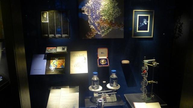 Các hiện vật được trưng bày cùng những câu chuyện vui hay và về đời tư của các chủ nhân giải Nobel.