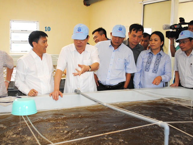 Ông Nguyễn Hoàng Anh, Giám đốc Công ty TNHH Đầu tư Nam Miền Trung.