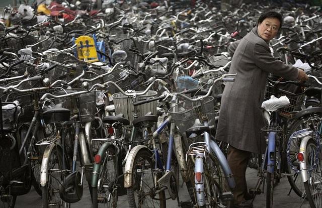 Việc tìm xe trong biển xe đạp tại một bãi gửi xe cũng không phải dễ dàng. (Ảnh: Dailymail)