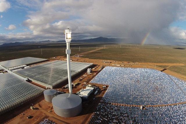 Trang trại Sundrop: trồng 180.000 cây cà chua mà không cần dùng nhiên liệu hóa thạch.