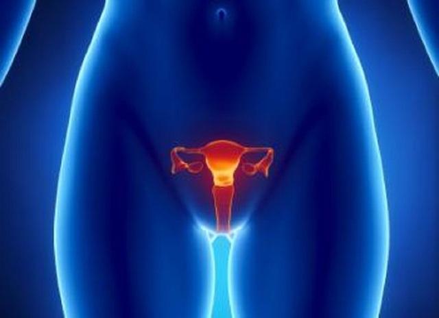 Nếu được xác nhận trong các nghiên cứu sâu hơn, những phát hiện mới thách thức quan điểm được chấp nhận rằng một người phụ nữ chỉ có thể sinh ra với một số trứng cố định và không thể phát triển hơn nữa trong cuộc đời.