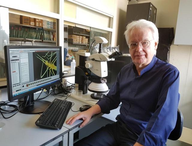 Giáo sư David Dudgeon, một đồng tác giả của nghiên cứu.
