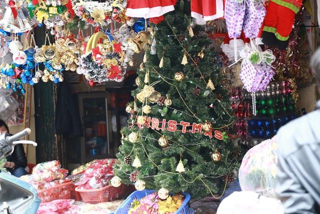 Cây thông, một vật dụng không thể thiếu trong dịp Giáng Sinh.