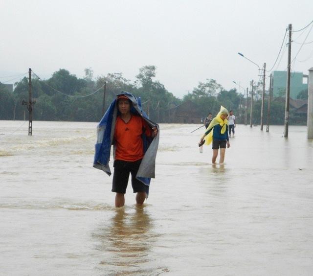 Người dân khu Đông huyện Tuy Phước (Bình Định) luôn chịu cảnh lụt lội nghiêm trọng nhất mỗi khi có lũ.