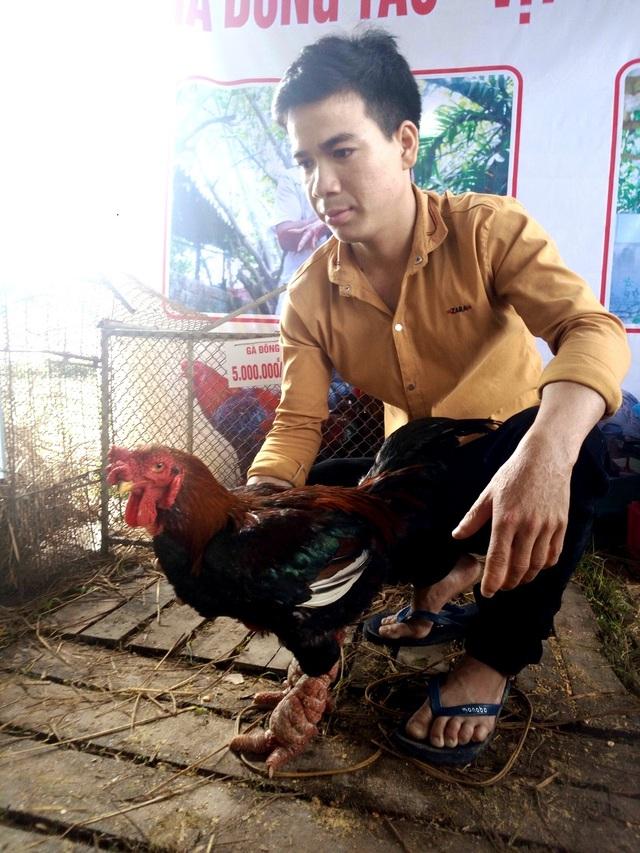 Một con gà Đông Tảo của anh Tuấn có giá 7 triệu đồng