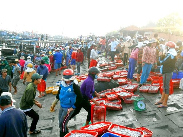 Từ sáng sớm rất đông người dân đợi sẵn để thu mua mực