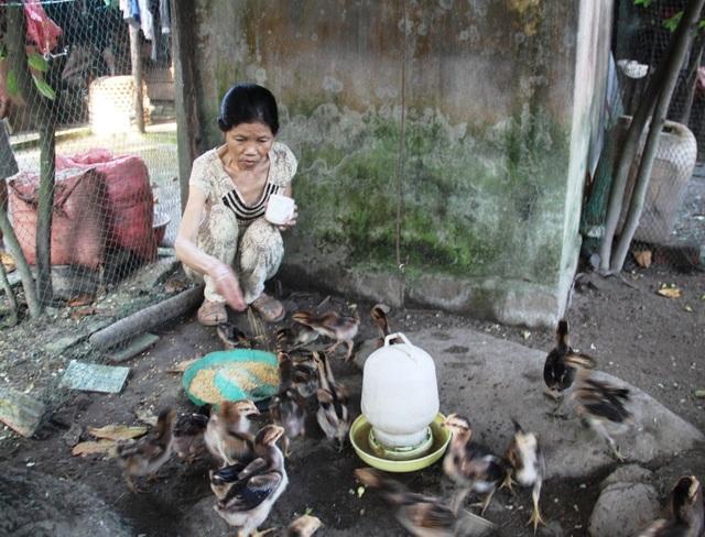 Bà Nương không còn làm những công việc nặng, hàng ngày bà ở nhà khi khỏe thì phụ chồng cơm nước cho con gà ăn