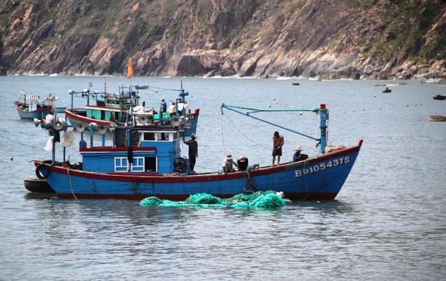 Trúng đậm cá nục, cá ồ, ngư dân xã Nhơn Lý (TP Quy Nhơn, Bình Định) hối hả ra khơi
