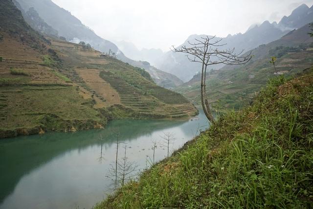 Sông Nho Quế bắt nguồn từ vùng núi Nghiễm Sơn (Vân Nam - Trung Quốc) chảy vào Việt Nam tại xã Lũng Cú (huyện Đồng Văn - Hà Giang) sau đó đổ vào sông Gâm tại xã Lý Bôn (Bảo Lâm - Cao Bằng). Tổng chiều dài sông là 192km, đoạn chảy trên địa phận nước ta là 46km.