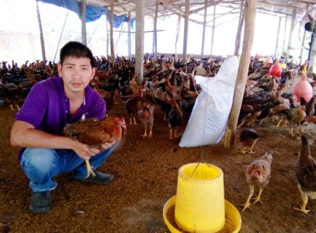 Với mô hình nuôi gà cho thu nhập cao, anh Đào Xuân Tuấn (32 tuổi, thôn Chánh Liêm, xã Cát Tường, huyện Phù Cát, Bình Định) là thanh niên duy nhất tỉnh nhận giải thưởng Lương Đình Của năm 2016.