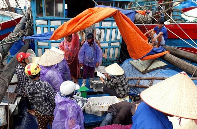 Người dân hối hả bán những mẻ cá trước giờ bão đổ bộ vào đất liền