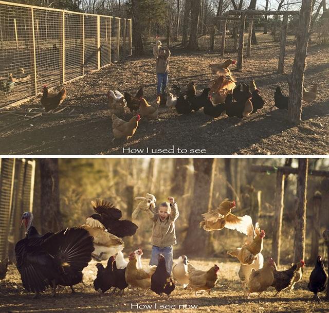 Cùng một bức ảnh đứa trẻ và đàn gà, nhưng góc chụp cho thấy sự khác biệt giữa 2 tấm ảnh.
