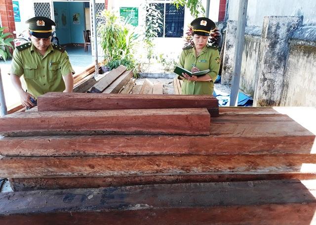 Nhiều khối gỗ đang được giữ tại Hạt kiểm lâm huyện Vân Canh (ảnh minh họa)