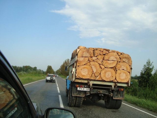 Các thân gỗ được sắp xếp một cách hoàn hảo trên xe tải.