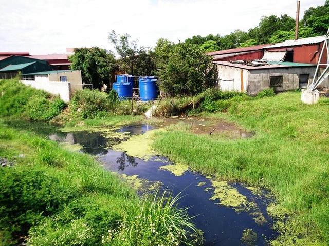 Nước thải của nhà máy chế biến nông sản Việt Xanh thải trực tiếp ra môi trường chưa qua xử lý làm kênh nước biến màu đen ngòm, bốc mùi hôi thối, gây ô nhiễm môi trường nghiêm trọng.