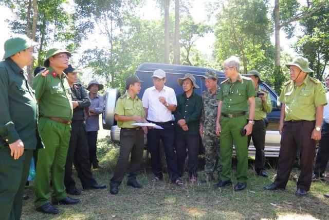 Các cơ quan chức năng tỉnh Bình Định trực tiếp kiểm tra hiện trường vụ 43 ha rừng tự nhiên ở huyện An Lão bị chặt phá không thương tiếc.