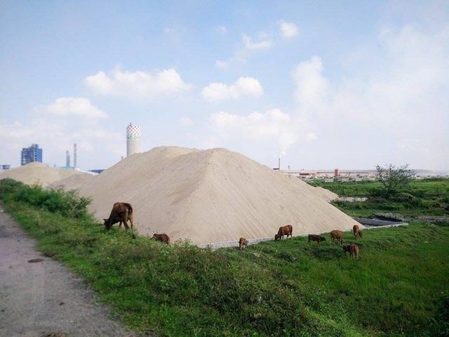 Một bãi cát khổng lồ sát đê sông Đáy vi phạm nghiêm trọng như chưa bị xử lý dẹp bỏ.