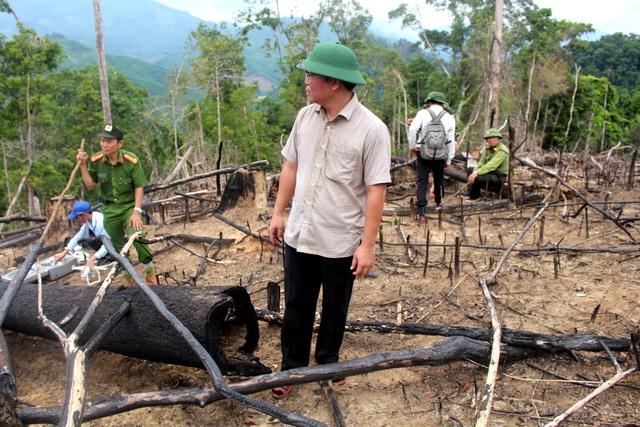 Ông Lê Trí Thanh – Phó Chủ tịch tỉnh Quảng Nam thị sát khu vực rừng bị phá
