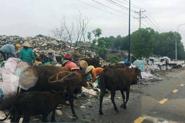 Bãi rác Đồng Tràm thuộc xã Cửa Dương nhiều lúc rác tràn ra đường. Sau nhiều lần phản ánh, hiện nay bãi rác đã được ngành chức năng che chắn lại.