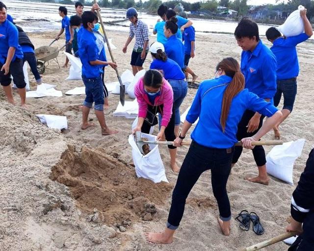 Các ĐVTN xắn quần lội ruộng giúp dân khắc phục sa bồi thủy phá sau lũ.