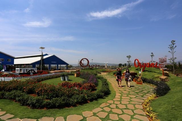 Một góc trang trại bò sữa Vinamilk Organic chuẩn châu Âu đầu tiên ở Việt Nam tại Lâm Đồng.