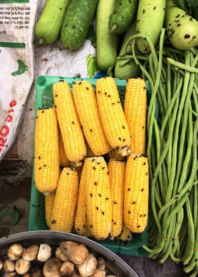Thực phẩm tươi sống bị ruồi bu, không đảm bảo vệ sinh an toàn thực phẩm.
