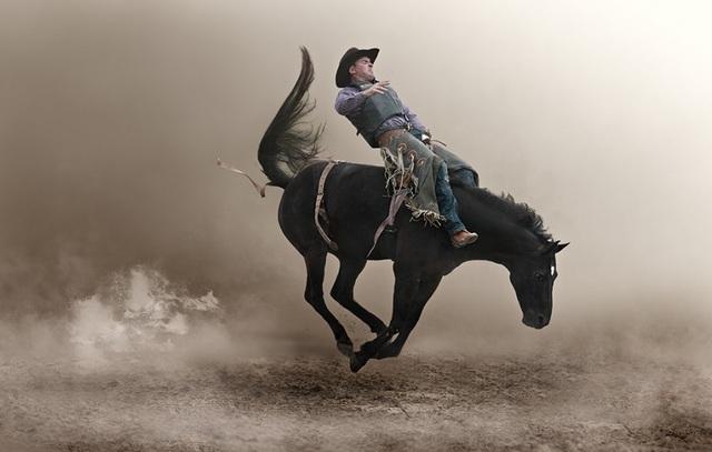 Ảnh chụp cảnh chú ngựa đang cố gắng hất tung chàng cao bồi khỏi lưng mình.