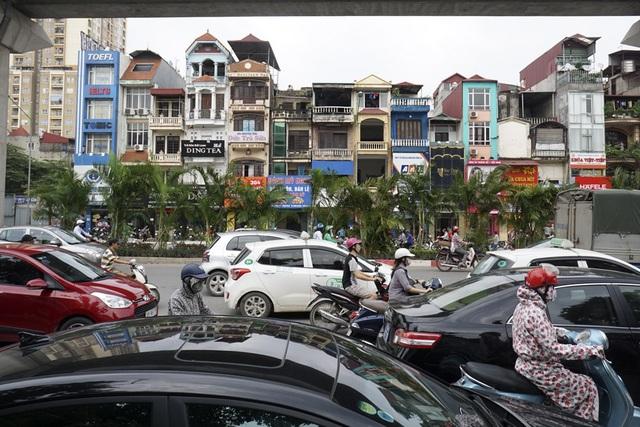 Hàng cây cau cảnh mới trồng trong bối cảnh giao thông đông đúc trên đường Nguyễn Trãi.