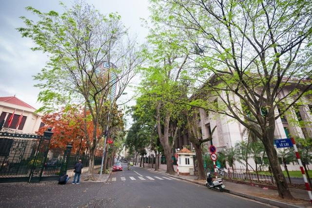 Vào khoảnh khắc giao mùa, thời tiết Hà Nội thay đổi rõ rệt, lúc nắng, lúc mưa khi thì lảng bảng mây mù những buổi sáng sớm, có lúc lại rực rỡ ánh nắng chan hòa.