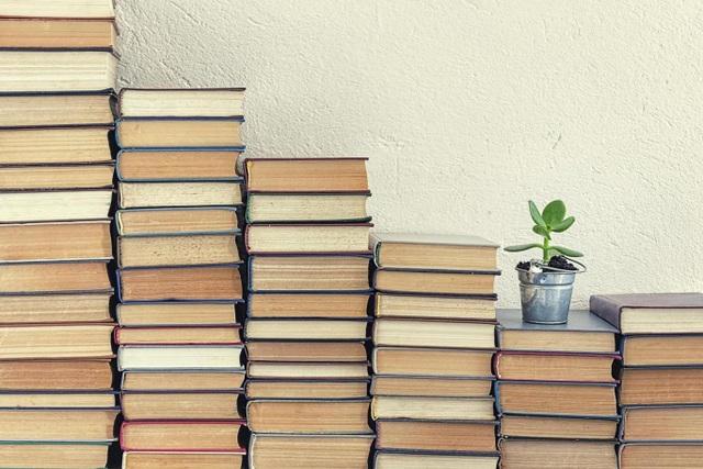Kỳ lạ cô bé 4 tuổi đọc hơn… 1.000 cuốn sách - 1