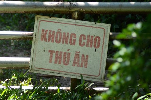 Rất nhiều bảng cảnh báo treo trong sở thú.
