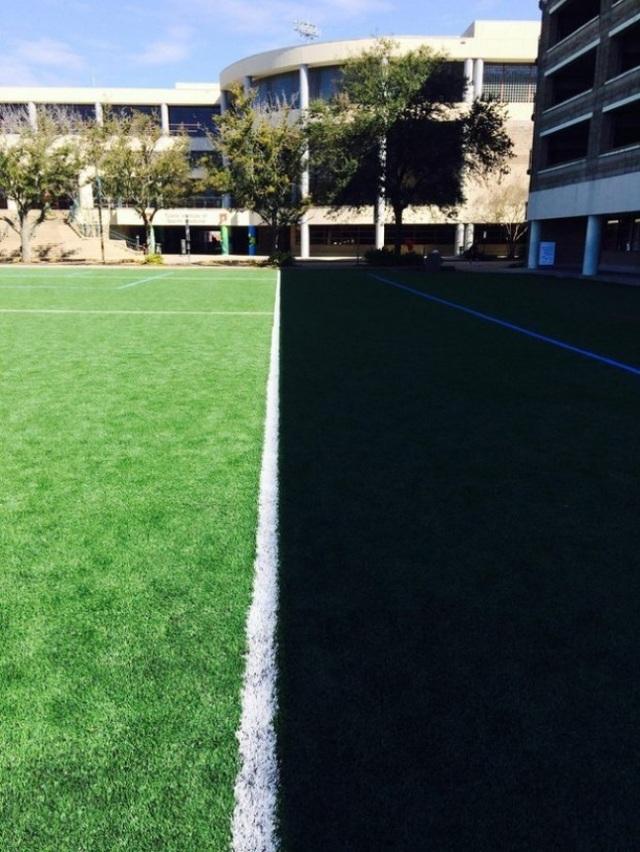 Bóng râm của tòa nhà phủ xuống mặt sân, song song một cách hoàn hảo với đường pitch.