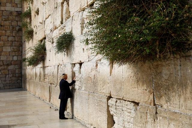 """Ông Trump đặt tay lên """"Bức tường Than khóc"""", nơi linh thiêng trong tín ngưỡng của người Do Thái, trong chuyến thăm chính thức Israel ngày 22/5/2017. (Ảnh: Reuters)"""