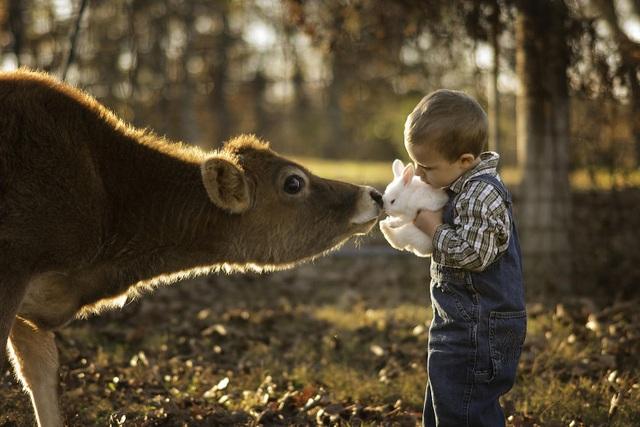 Bộ ảnh tuyệt đẹp về tuổi thơ trên nông trại - 1