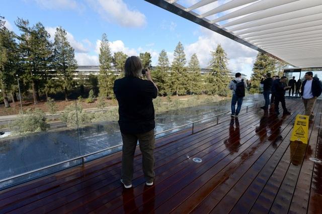 Dù là trụ sở làm việc, nhưng du khách vô cùng ấn tượng với cách mà Apple hòa mình vào thiên nhiên, với cảnh quan không thua kém gì những khu nghỉ dưỡng đắt tiền.