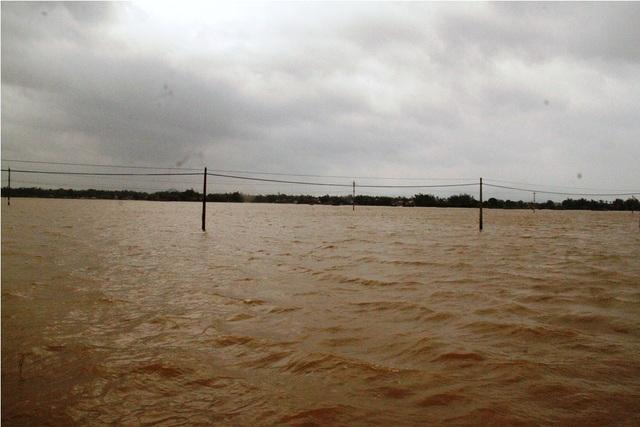 Mưa lũ cộng với đê Gò Ông Ngôn ở (xã Phước Hòa) bị vỡ đoạn dài gần 70 mét khiến hàng trăm ha đất sản xuất lúa bị ngập nên chậm lịch gieo sạ cả hơn 1 tháng