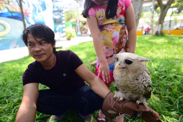 Các loại chim lạ cũng được mang ra trưng bày tại lễ hội.