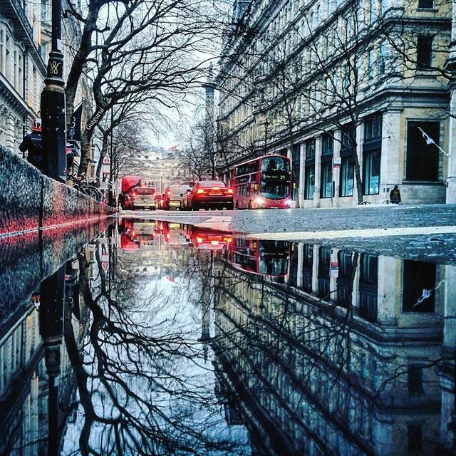 Hình ảnh tuyệt đẹp và hiệu ứng ánh sáng đèn hậu ô tô được tái hiện hoàn hảo trên một vũng nước.
