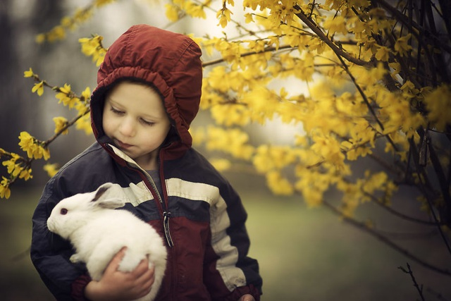 Bộ ảnh tuyệt đẹp về tuổi thơ trên nông trại - 4