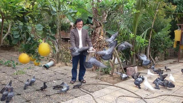 Nghệ sĩ Giang còi chia sẻ, nhà trồng rất nhiều loại cây ăn quả và anh vui thú với việc trồng cây.