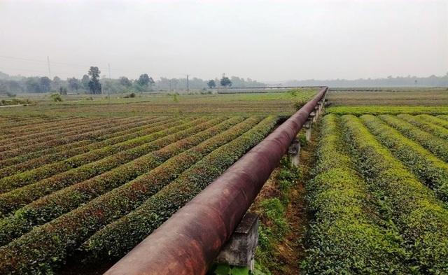 Nghệ An: Công trình thủy lợi tiền tỷ xây xong chờ ngày... phá hủy! - 2