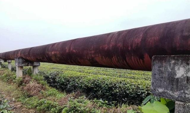 Nghệ An: Công trình thủy lợi tiền tỷ xây xong chờ ngày... phá hủy! - 3