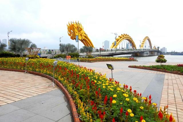Xuân đã về trên phố phường Đà Nẵng