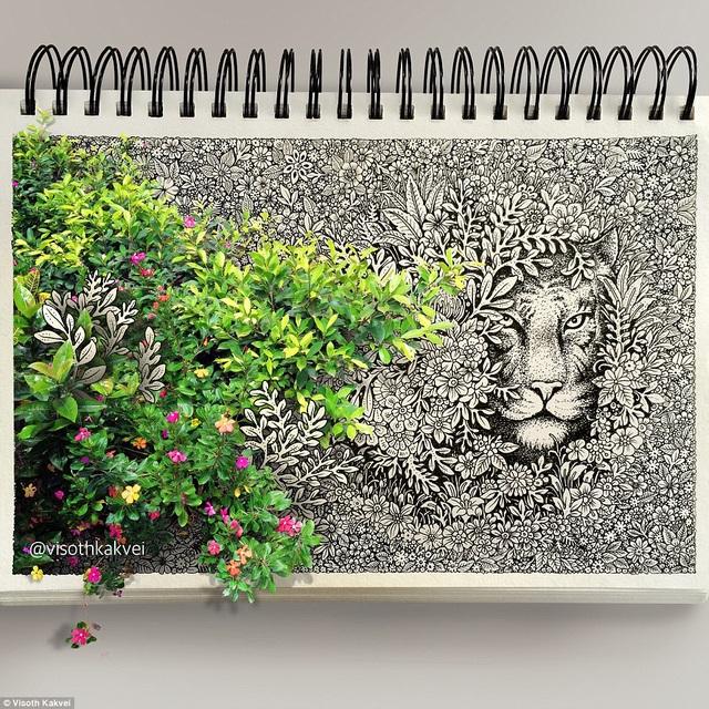 Bức vẽ có chèn một số hình ảnh màu sắc đặt cạnh những nét vẽ từ bút mực đen.