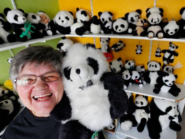 Bà Celine Cornet ở thị trấn Haccourt, Bỉ rất yêu thích gấu trúc nên đã sưu tầm tới 2.200 chú gấu trúc nhồi bông.
