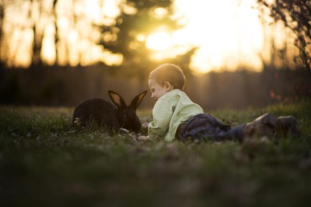 Bộ ảnh tuyệt đẹp về tuổi thơ trên nông trại - 7