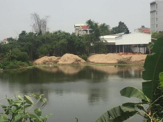 Chủ tịch TP Hà Nội chỉ đạo làm rõ vụ lấp hồ, chiếm nơi ở của đàn cò vạc nghìn con - 2