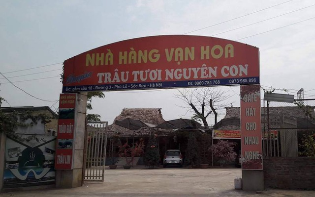 Chủ tịch TP Hà Nội chỉ đạo làm rõ vụ lấp hồ, chiếm nơi ở của đàn cò vạc nghìn con - 4