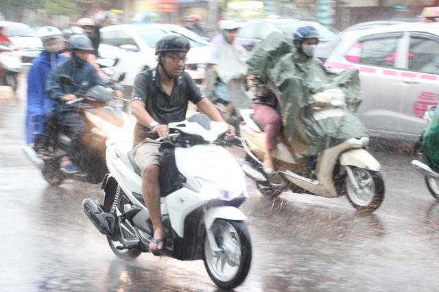 Hà Nội mưa giông lớn, cây đổ, đường ngập - 1