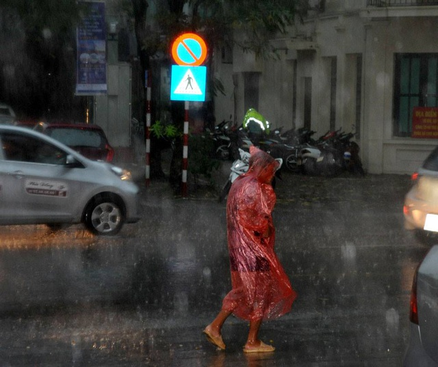 Một người đi bộ trong cơn mưa lớn trên phố Lê Duẩn (ảnh: Minh Hải)